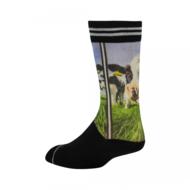 Sock my Feet - SOCK MY LICKING NOSE
